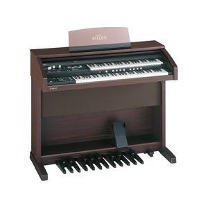Dan-Organ-Roland-AT-300